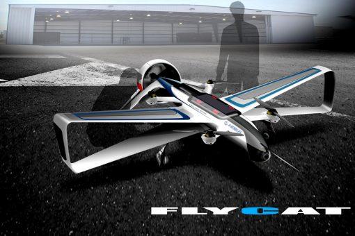 flycat_01