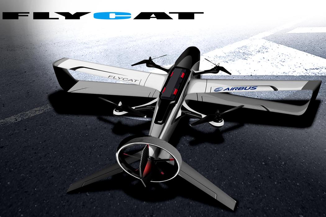 flycat_02