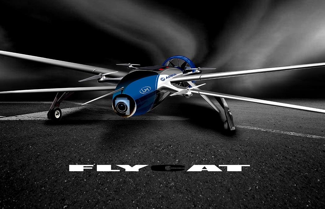 flycat_03