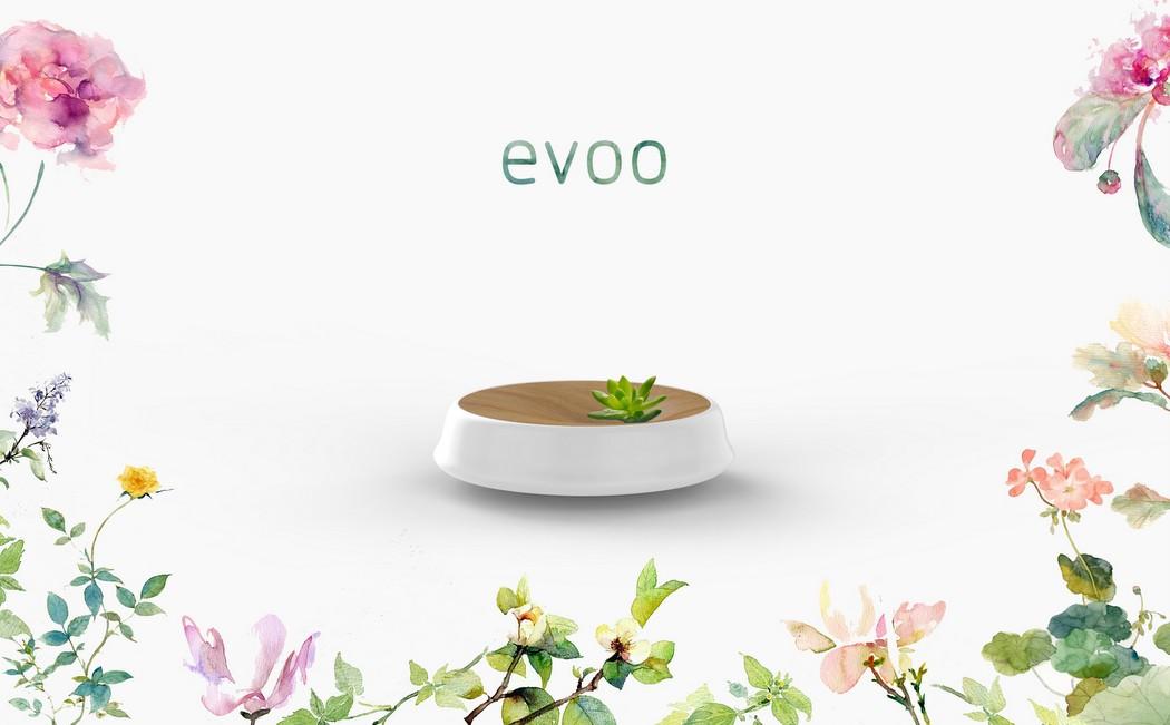 evoo_cleaner_6
