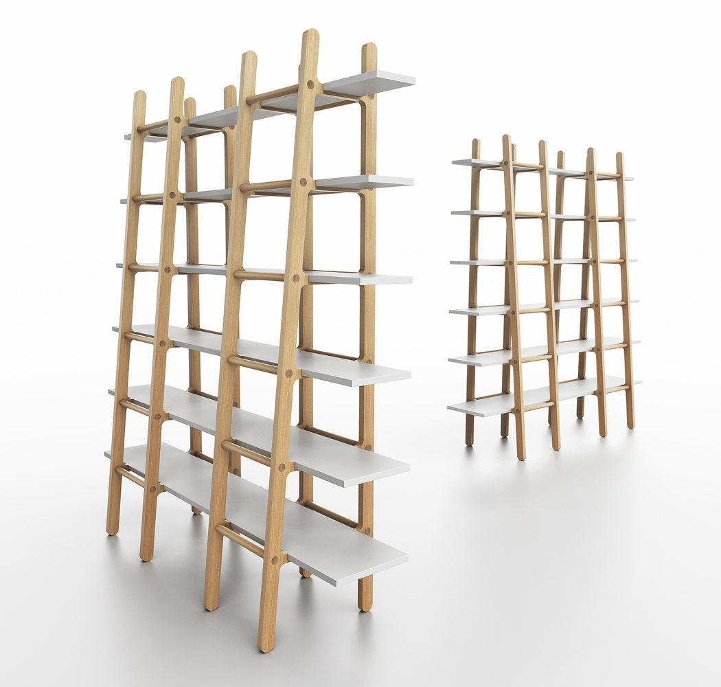huxley_ladder3