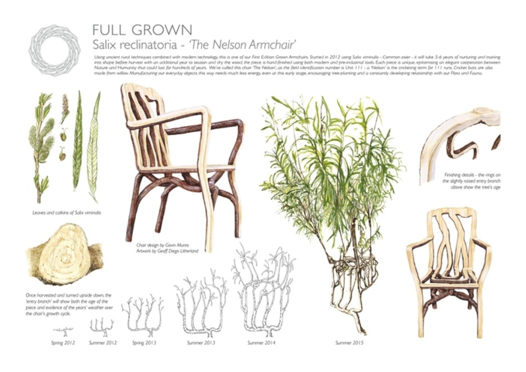 fullgrown_2
