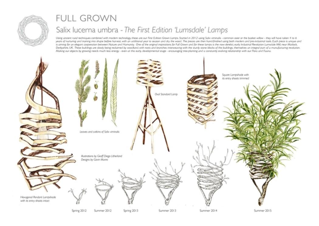 fullgrown_3