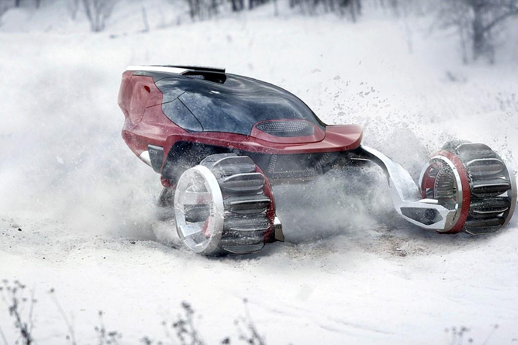rdsv_snowmobile_1