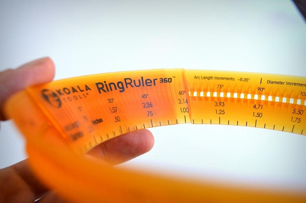 koala_ring_ruler_3