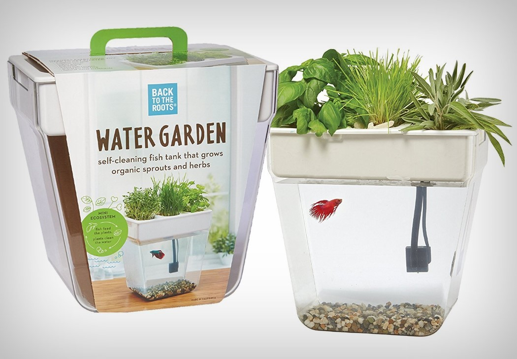 Fish feeds plant feeds fish yanko design for Water garden fish