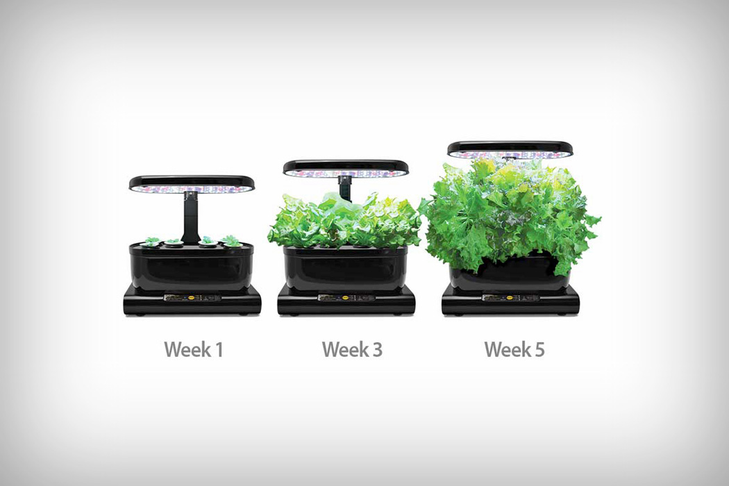 aerogarden_harvest_touch_03