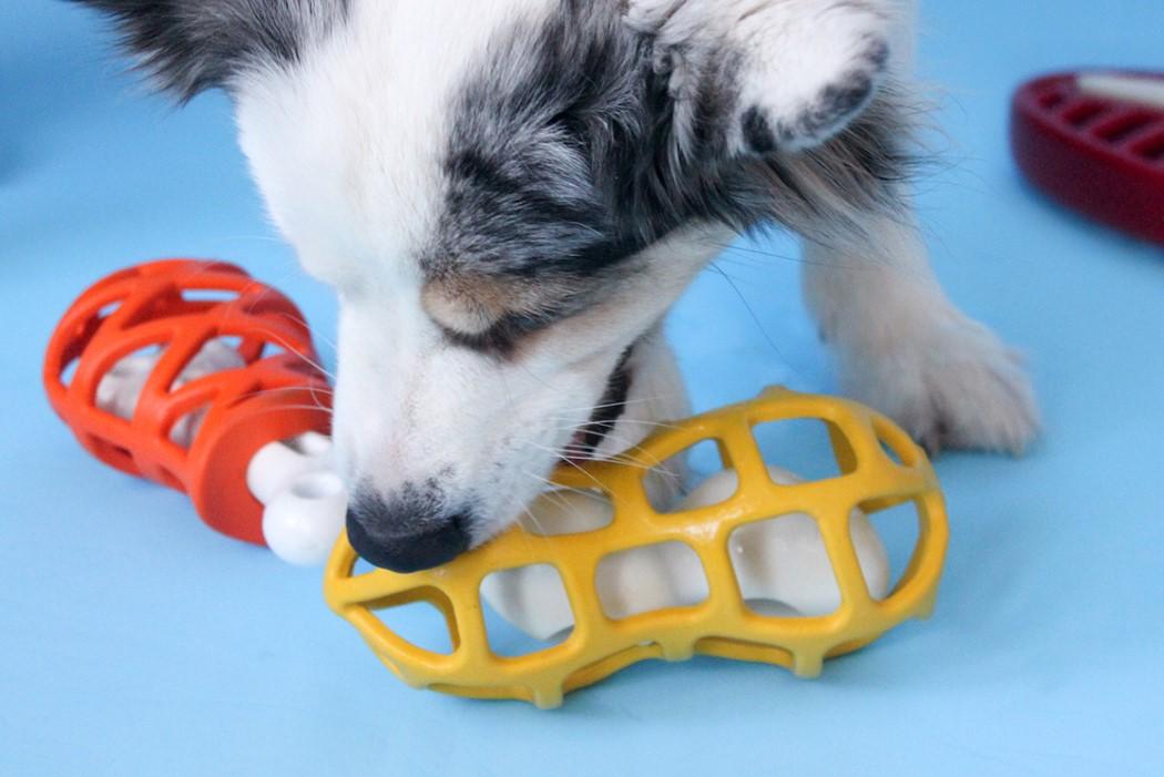 jw_dog_toys_6