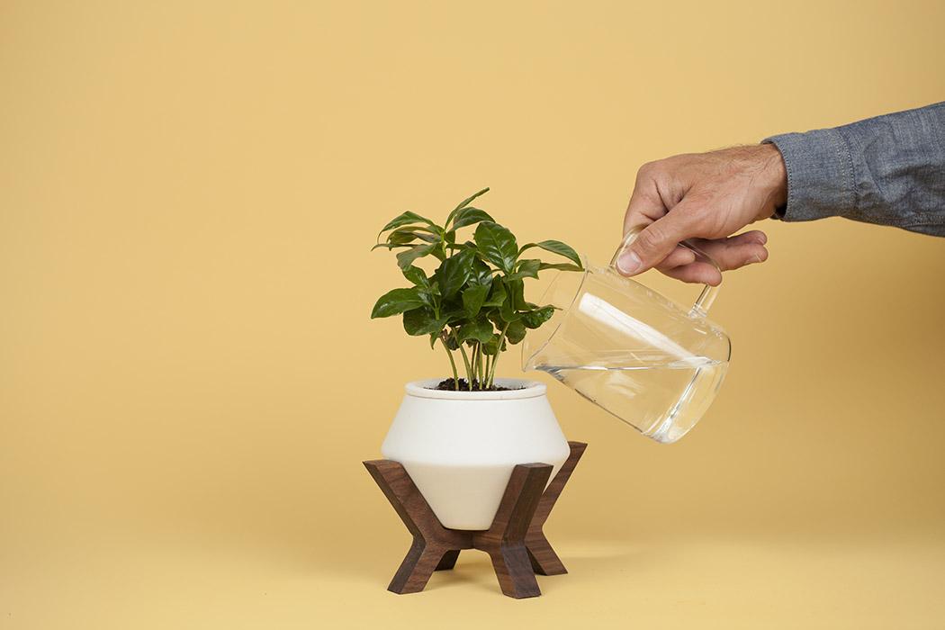 lander_planter_16