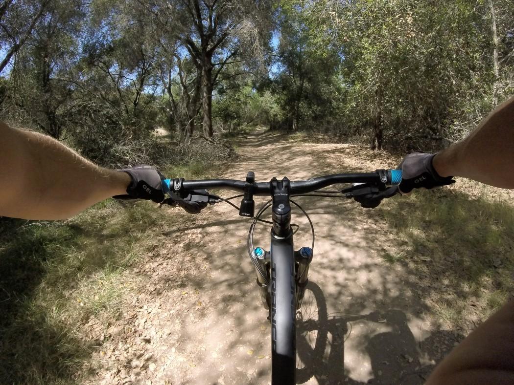 timber_bike_bell_5