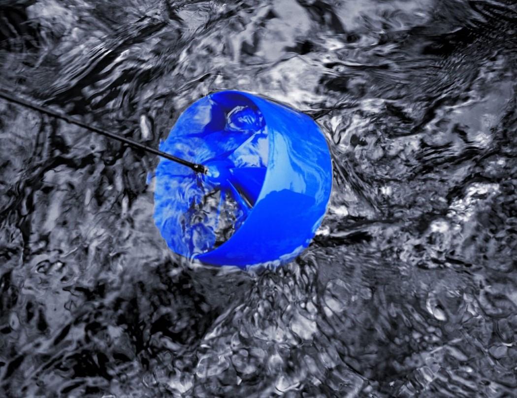 blue_freedom_2