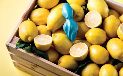 octo_citrus_1