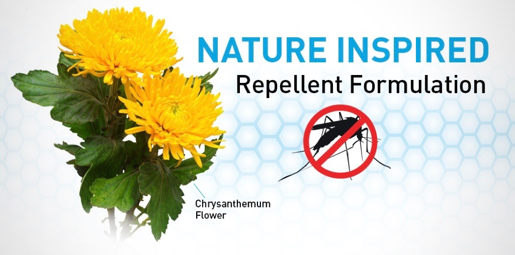 Natural Mosquito Repellent To Use Indoors