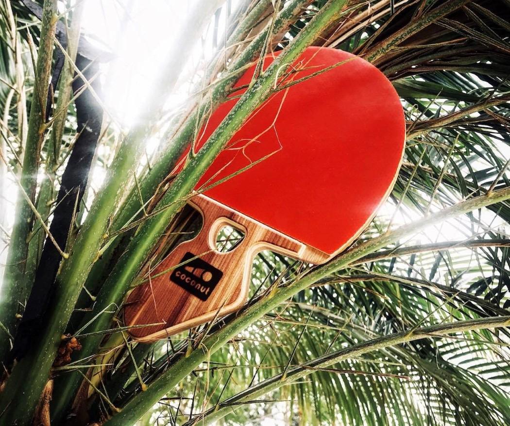 coconut_paddle_v2_3