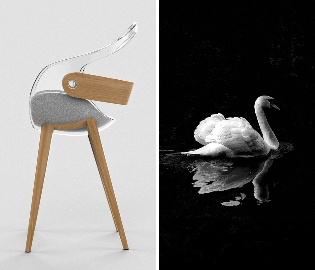 This Chair's No Ugly Duckling