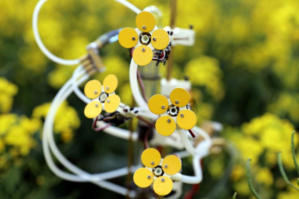 synthetic_pollinator_1