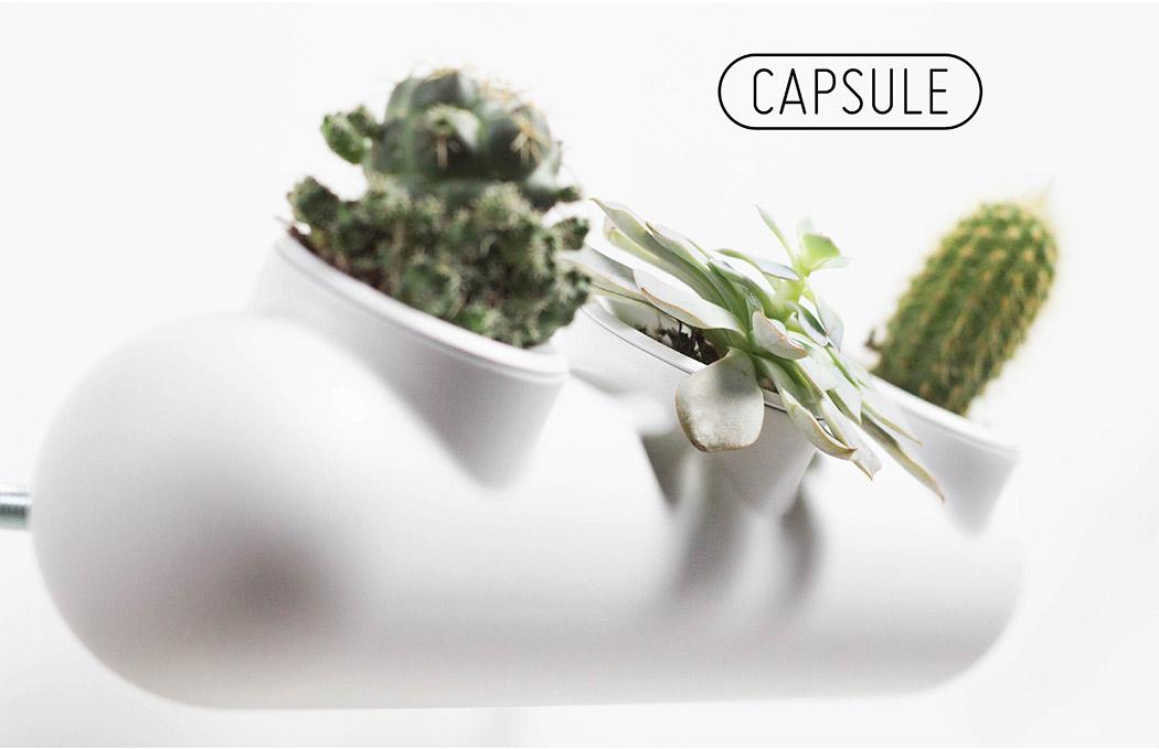 capsule_01