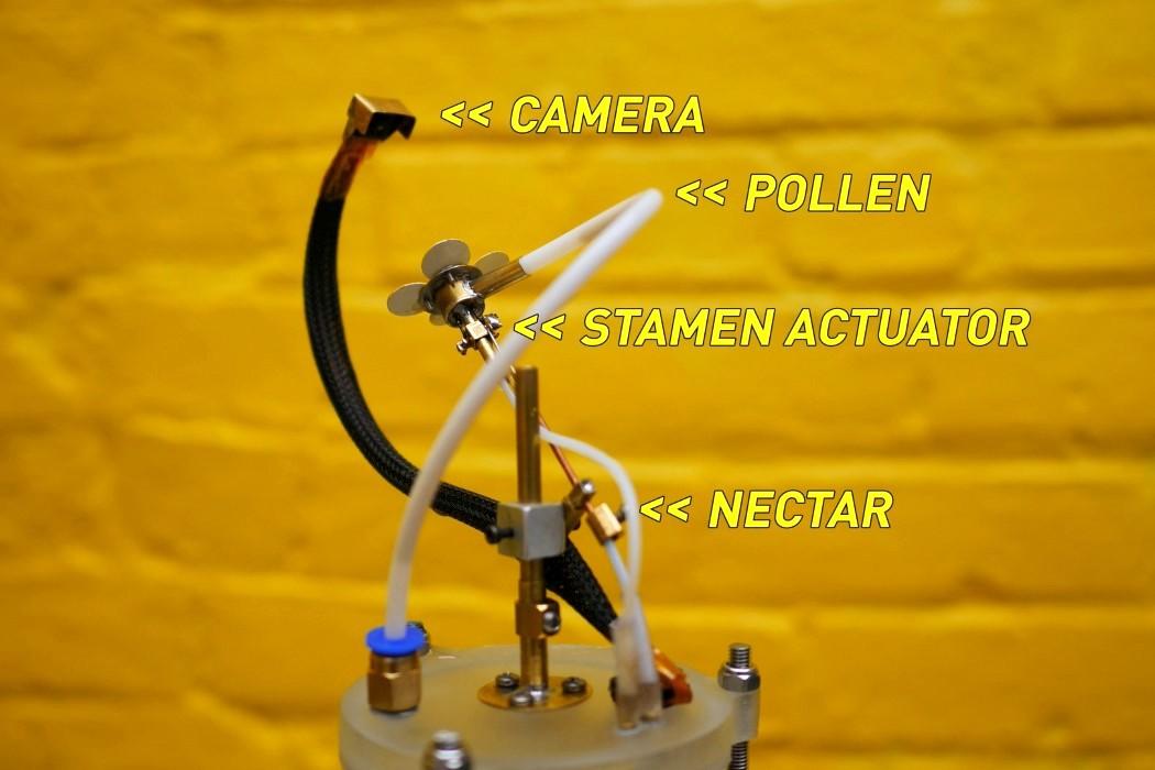 synthetic_pollinator_8
