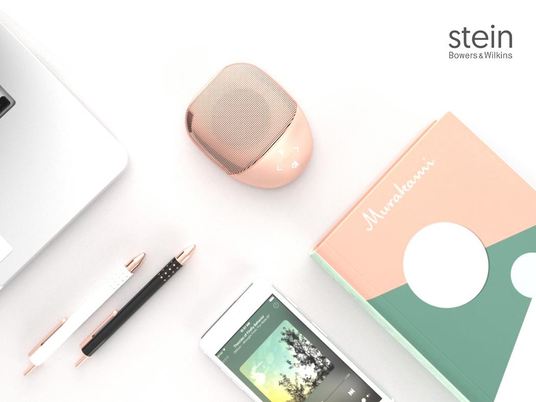 stein_03