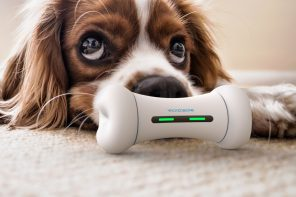 A smart, interactive bone-toy that reacts and plays with your dog