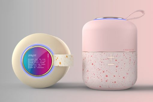 capsule_speaker_layout