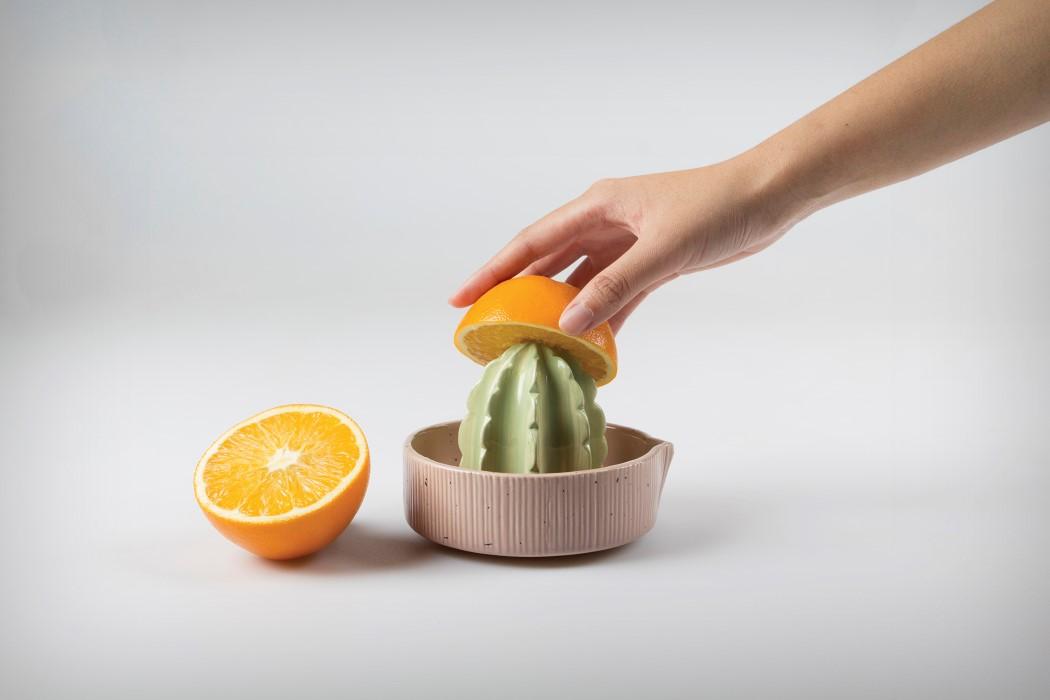 cactus_juicer_1
