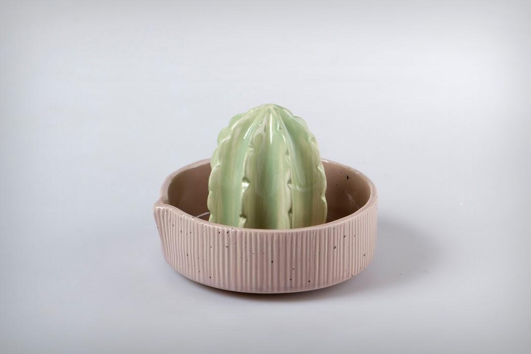 cactus_juicer_4
