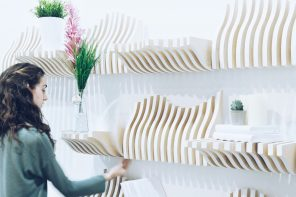 The Adaptable Shelving Unit