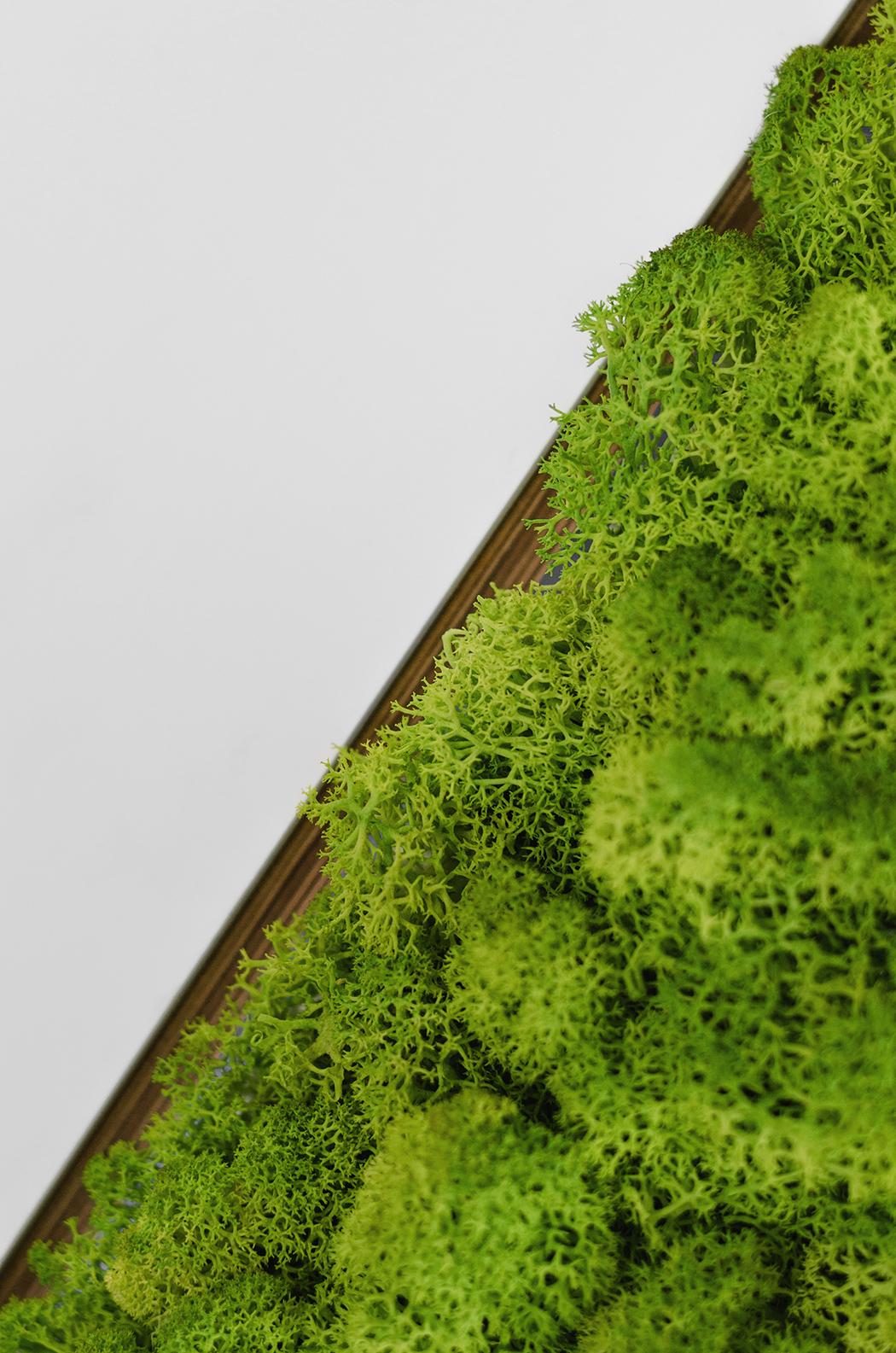 greenplanet_10