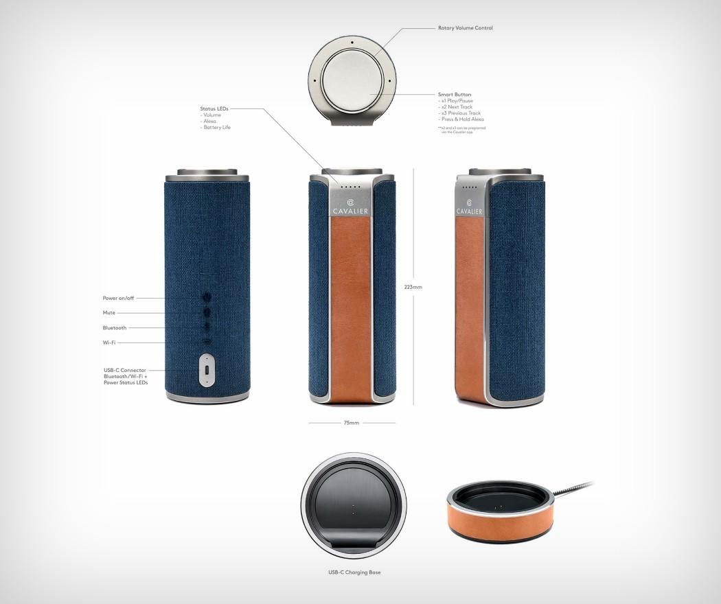 CAV1LT Product Details