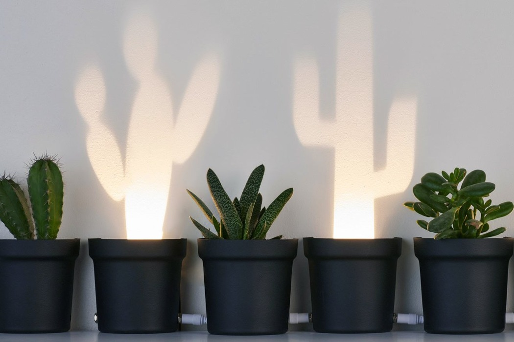 cactus_lamp