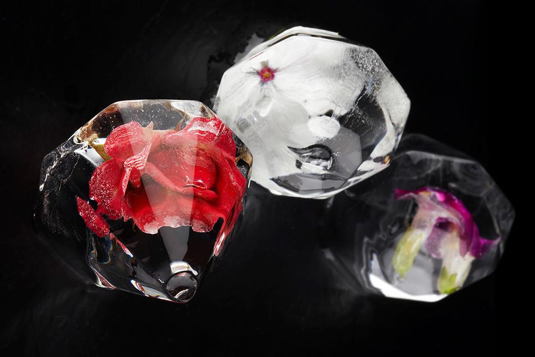 jewel_ice_06