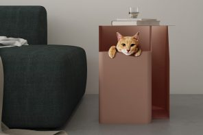 Furniture for Furballs