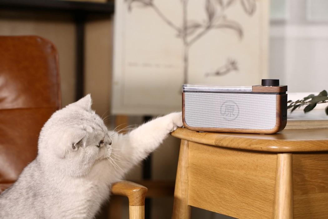 radio_speaker_10