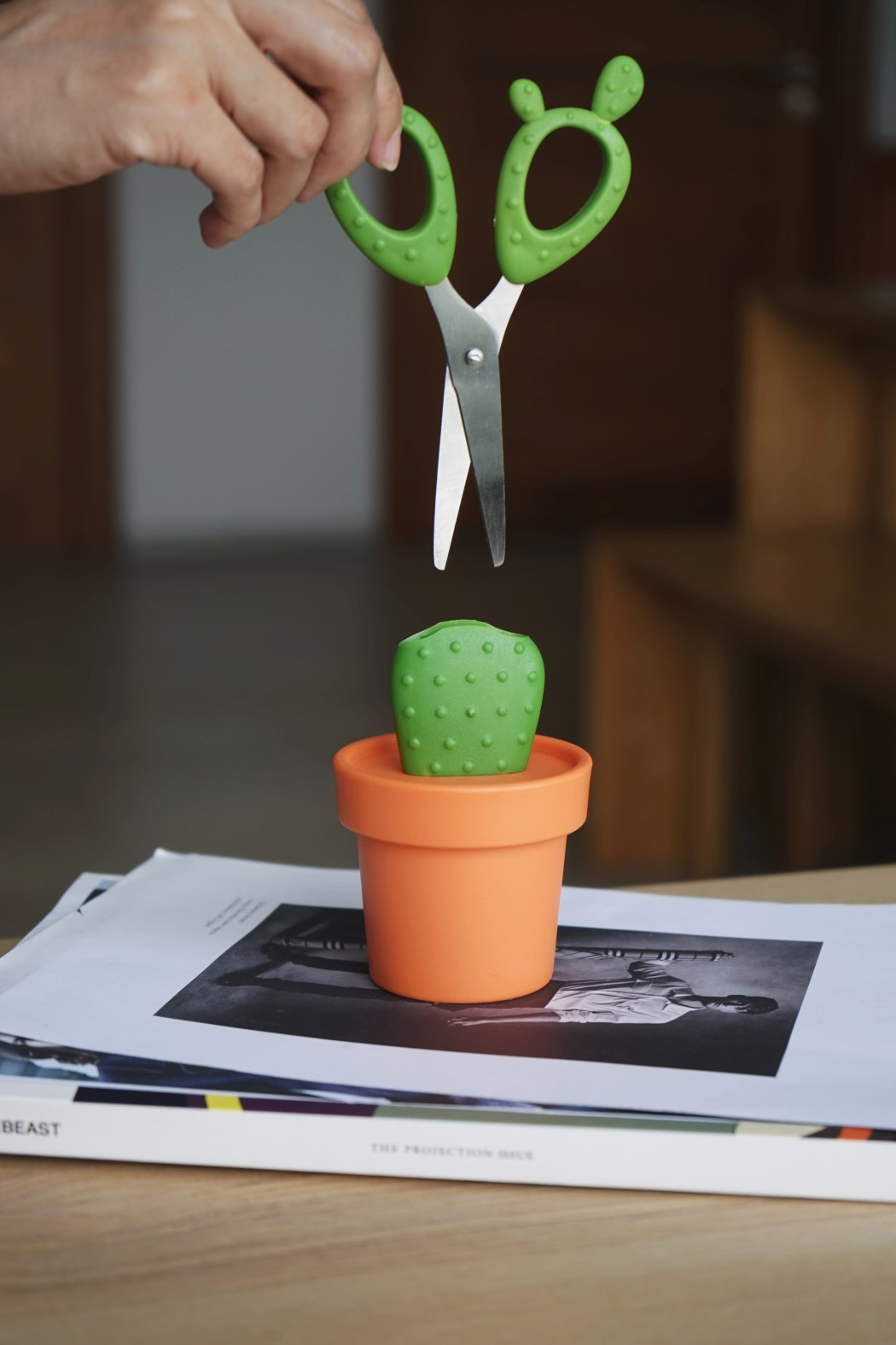 cactus_scissors_5