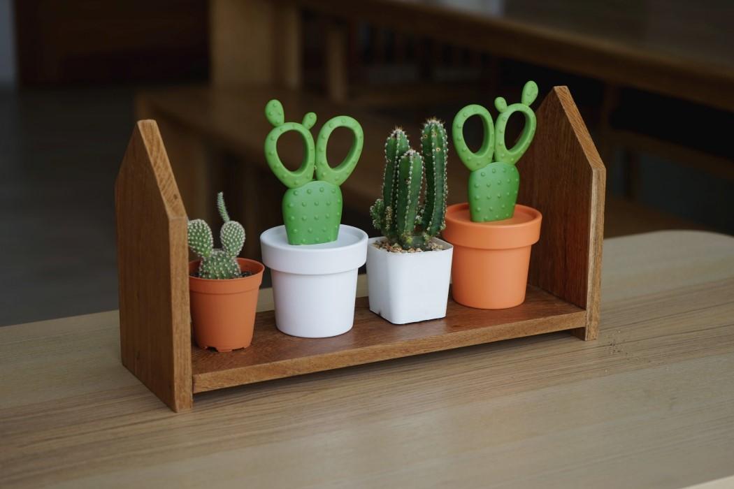 cactus_scissors_8