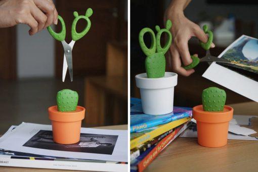 cactus_scissors_layout