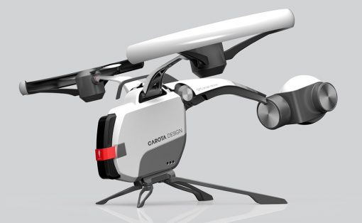 giant_hornet_drone_1