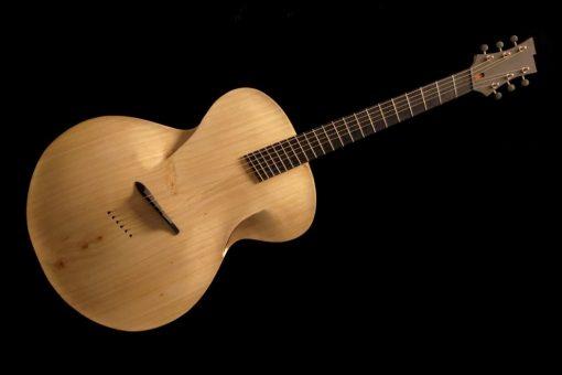 maxwell_infinitum_guitar_1
