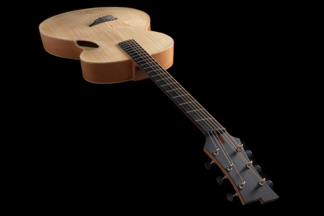 maxwell_infinitum_guitar_2