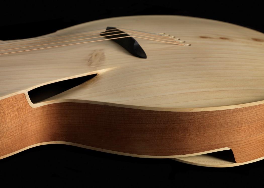 maxwell_infinitum_guitar_4
