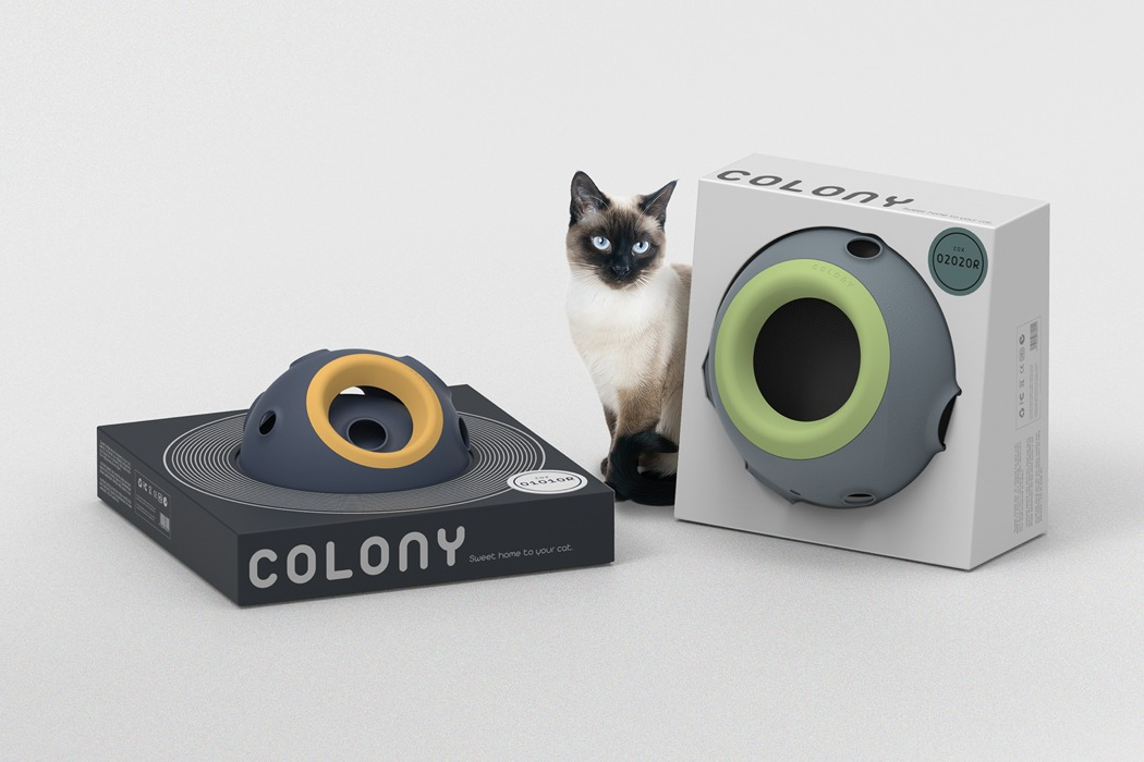 colony_cat_home_08