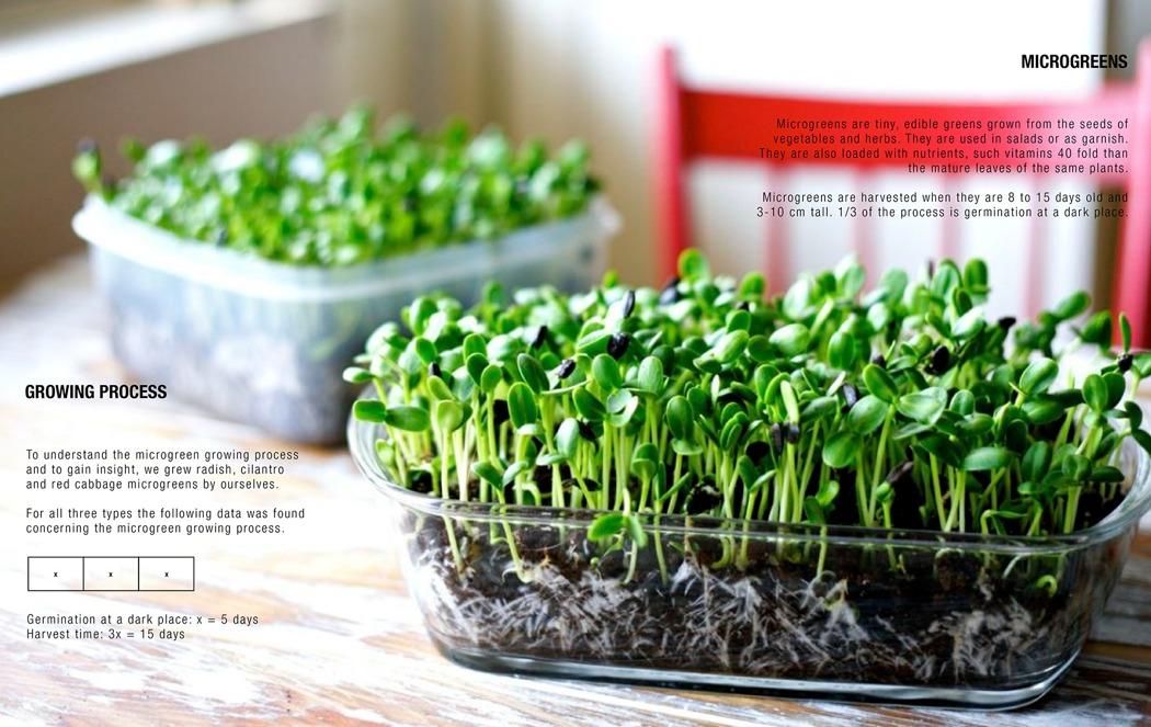 mizzle_smart_microgreen_grower_02