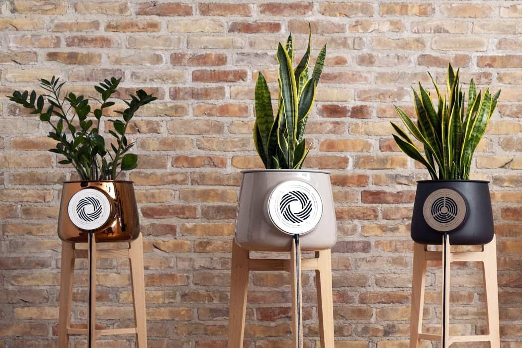 Clairy's Planter/Purifier keeps the house green and the air clean