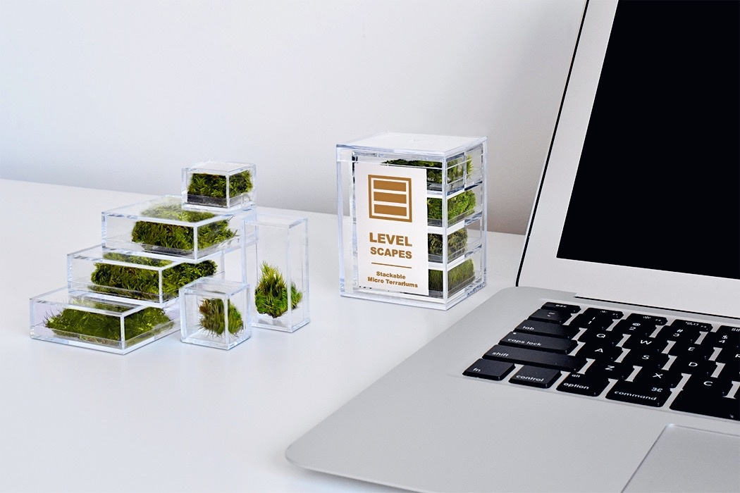 Playable, stackable terrarium blocks that bring mother nature to your desk!
