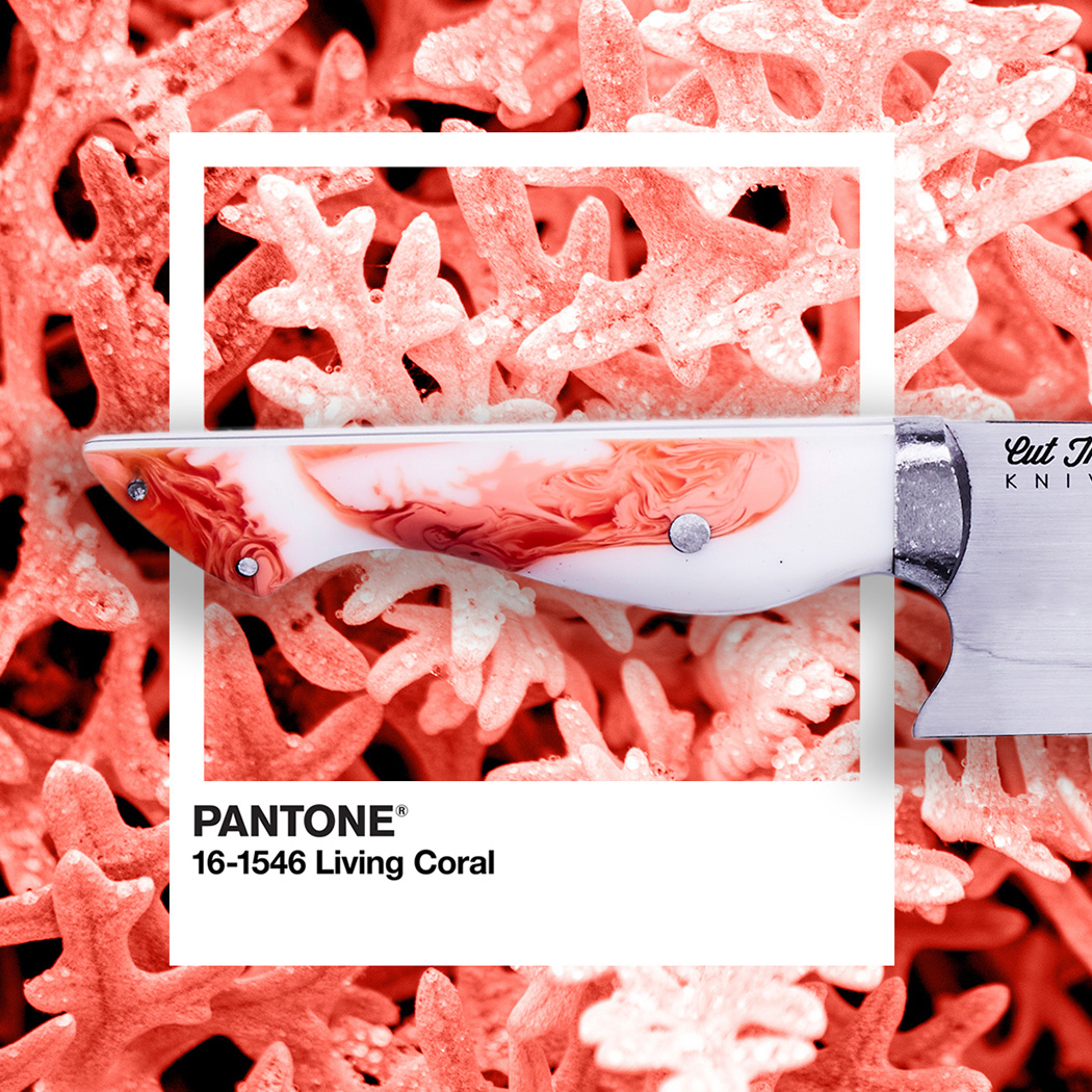 This limited-edition kitchen essential comes with a PANTONE Living