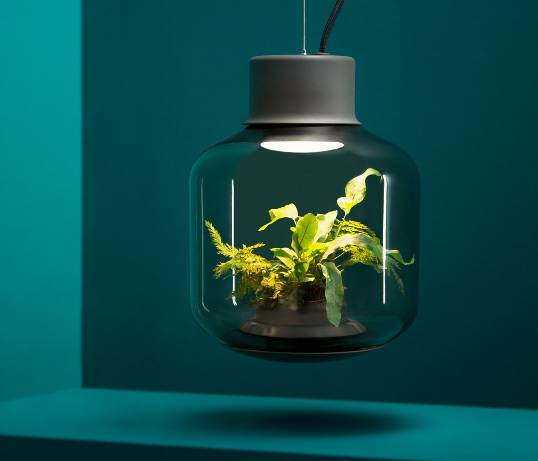 10 Indoor gardening gadgets and accessories for your home