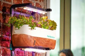 Herbstation is the most flexible gardening system that grows fresh produce year-round