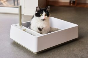 A Scandinavian-styled minimalist cat litter-box that puts IKEA's furniture to shame