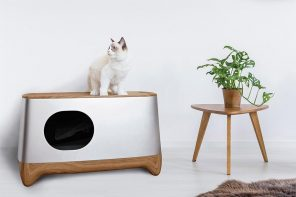 This self-cleaning, AI-enabled litter box auto-packs your cat's waste for disposal!